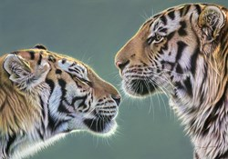 Young Love by Darryn Eggleton - Original Drawing on Mounted Paper sized 19x13 inches. Available from Whitewall Galleries